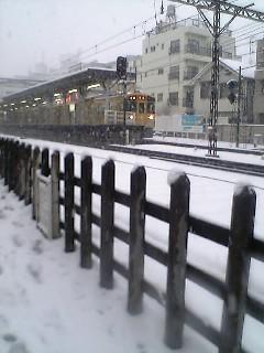 東京は雪_a0028804_18283793.jpg