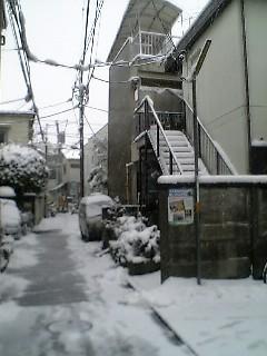 東京は雪_a0028804_18321720.jpg
