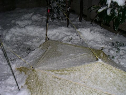 裏庭雪中キャンプ / Integral Designs SilShelter_e0024555_17522412.jpg