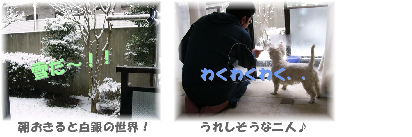 f0039907_0233289.jpg