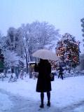 雪遊び_d0052317_19163923.jpg