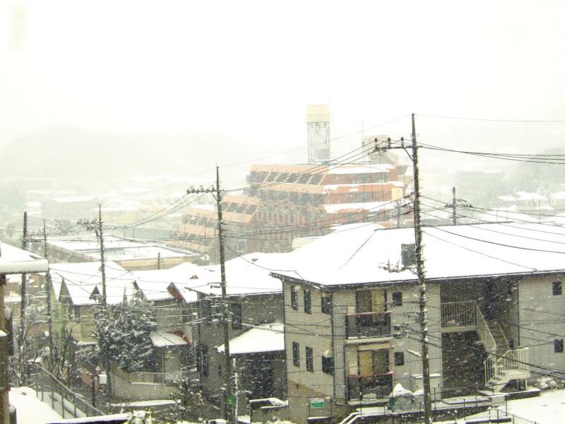 雪が降っても1日の長さは一緒_c0039145_2036252.jpg