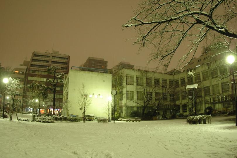 雪が降っても1日の長さは一緒_c0039145_20551599.jpg