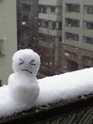 06.01.21 大雪でした。再び。_e0038558_218092.jpg