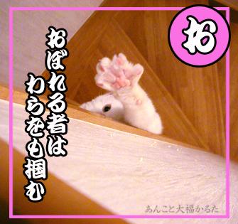 d0036897_151036.jpg