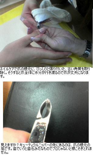 b0059410_144635.jpg