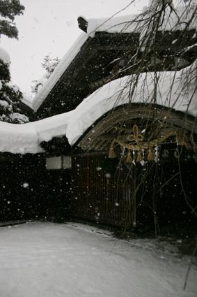 米と水 厳しき寒さ 醸す人_b0031538_2293222.jpg