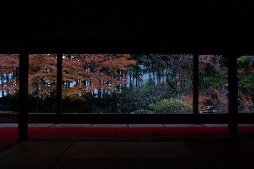 秋の額縁庭園_e0051888_10121443.jpg