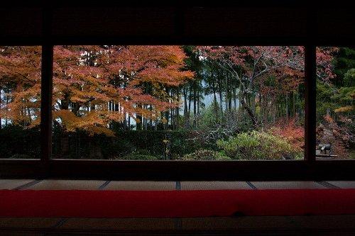 秋の額縁庭園_e0051888_1012179.jpg