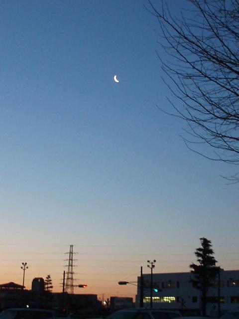 月の朝_e0077521_215281.jpg