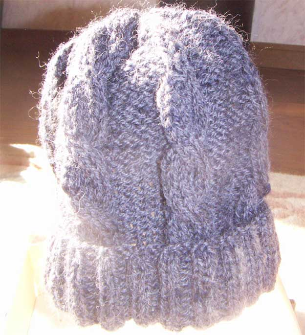 クリン毛の帽子    1月27日  fri_e0018604_131774.jpg
