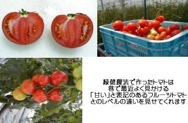 f0014379_17104663.jpg