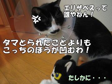 b0041182_18205376.jpg