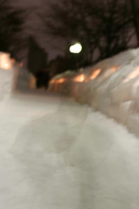 知りつつも ワンコ撮りたや 雪まつり  _b0031538_2243628.jpg