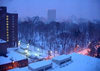 やはり札幌、雪国だ_c0002682_6461437.jpg