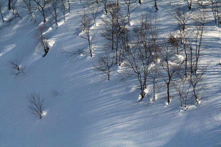 雪模様_d0012134_23332758.jpg