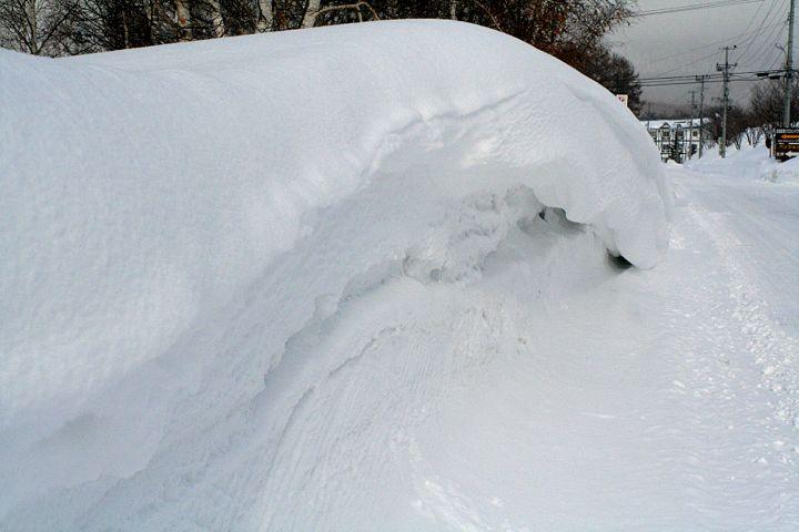 雪模様_d0012134_23442469.jpg