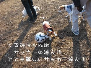 f0020777_0112760.jpg