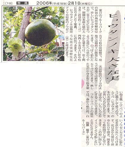 コイテの日本語名はズバリ、「ヒョウタンノキ」_f0036763_2355515.jpg