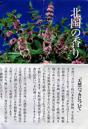 神戸に帰って来ました。_d0035397_21221217.jpg