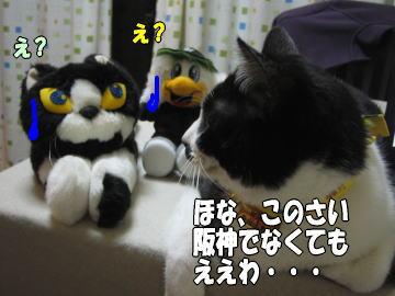 b0041182_8243094.jpg
