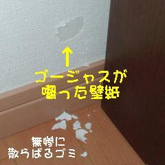 b0016983_16112596.jpg