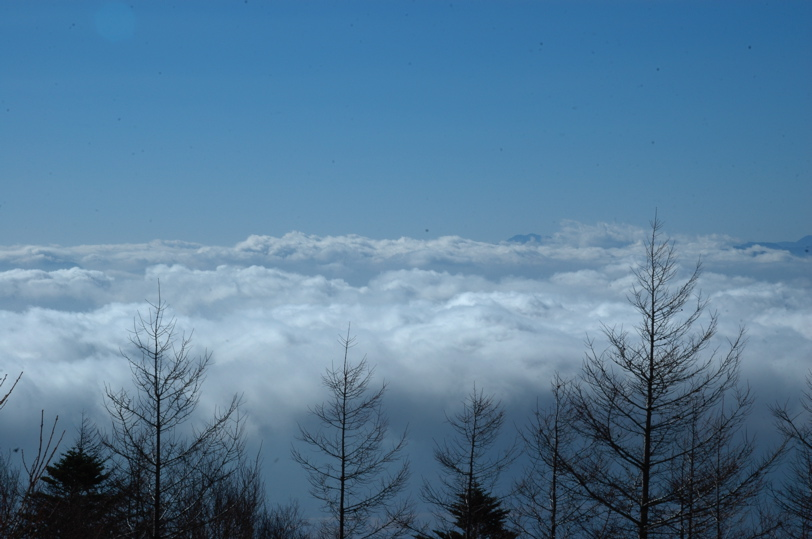 山中湖全面氷結_c0039145_10223793.jpg