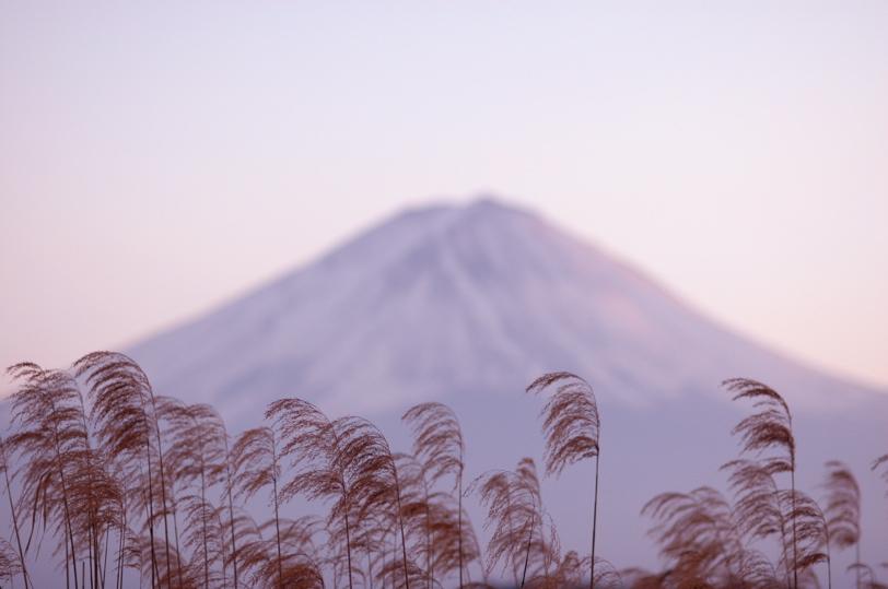 山中湖全面氷結_c0039145_10313356.jpg