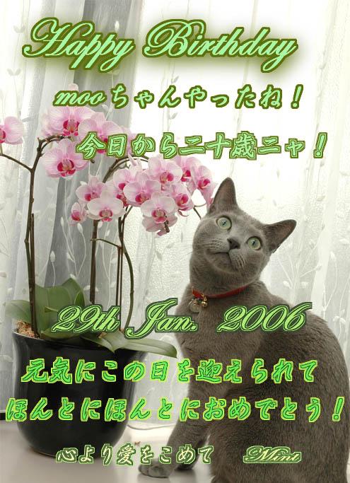 b0034284_0403329.jpg