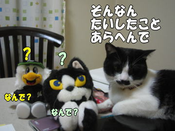 b0041182_030132.jpg