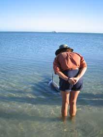 イルカとたわむれる、モンキー・マイア_b0053082_18223950.jpg