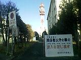 b0060945_1584865.jpg