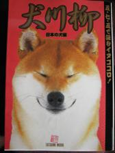 犬川柳_c0049950_212924100.jpg