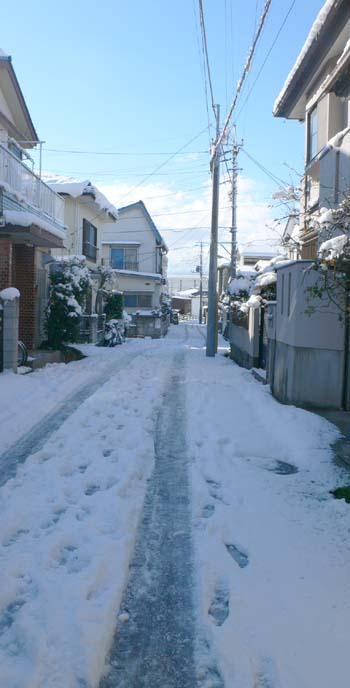 また雪降らないかな☆_a0028350_0145894.jpg