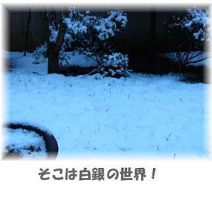 f0039907_2271883.jpg