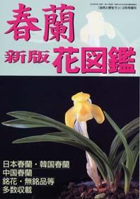 ◆「春蘭花図」が発売されました・・・          (No.55)_b0034163_11485847.jpg