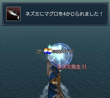 f0058015_1450857.jpg
