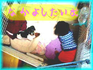 b0048649_13374029.jpg