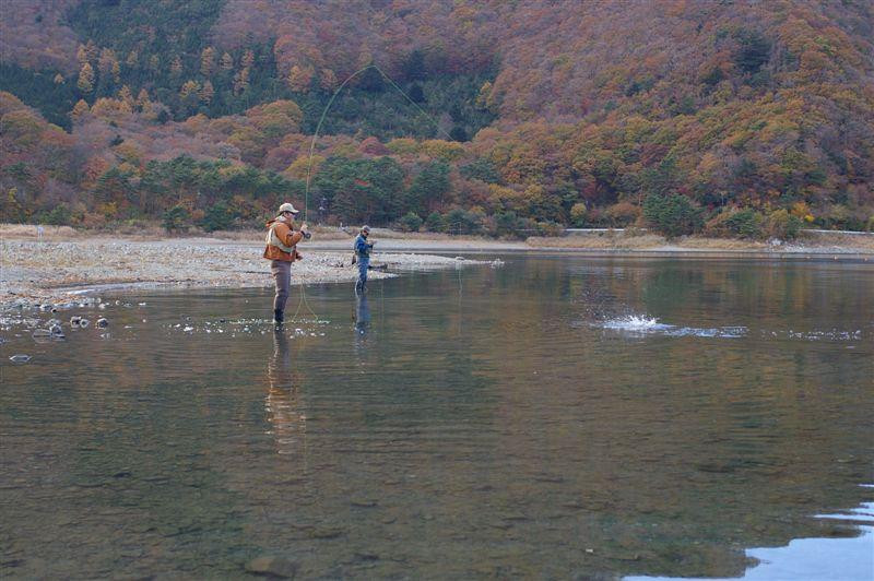 再び本栖湖だぁ!さよなら岡ちゃん。_f0064359_21452491.jpg