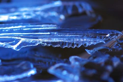 氷_f0018464_2165170.jpg
