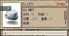 f0051113_2346414.jpg