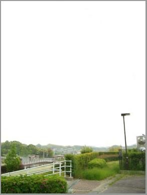 桃花台線廃止後の提案:高架橋はできるだけ早く撤去すべきだ!_c0057662_1012199.jpg
