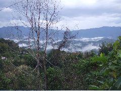 ボルネオ旅行記 (4) ラフレシアを求めてジャングル温泉_b0054727_23571035.jpg