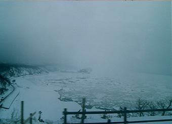 氷の上のあざらし君は@北海道_d0035397_2235031.jpg