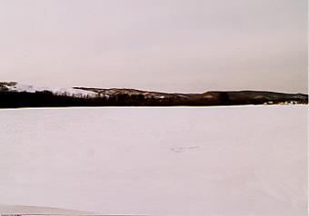 氷の上のあざらし君は@北海道_d0035397_233934100.jpg