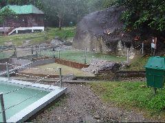 ボルネオ旅行記 (4) ラフレシアを求めてジャングル温泉_b0054727_014534.jpg