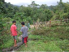 ボルネオ旅行記 (4) ラフレシアを求めてジャングル温泉_b0054727_0291161.jpg