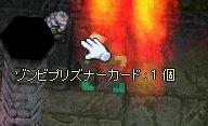 b0060488_6565255.jpg