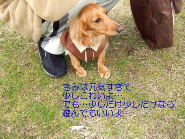 f0059334_107636.jpg