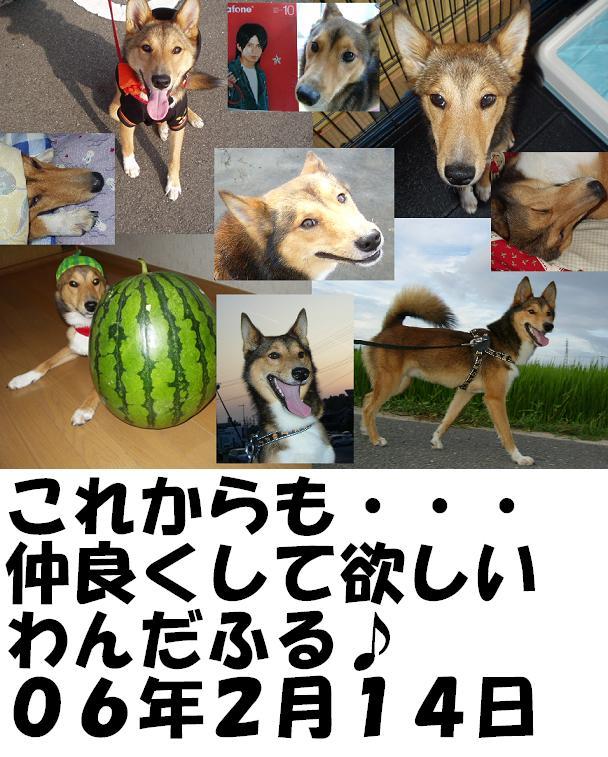 d0032004_20462246.jpg